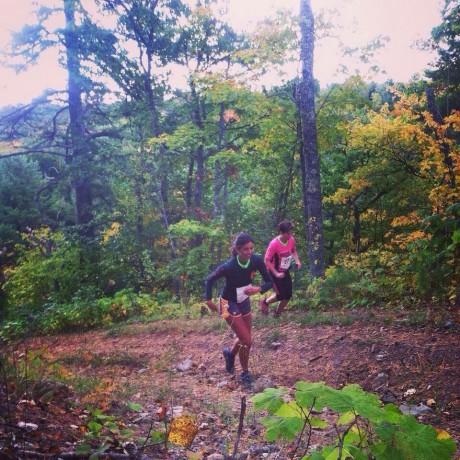 mt bohemia trail running festival